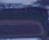 blueberryblueseatmii1492155952