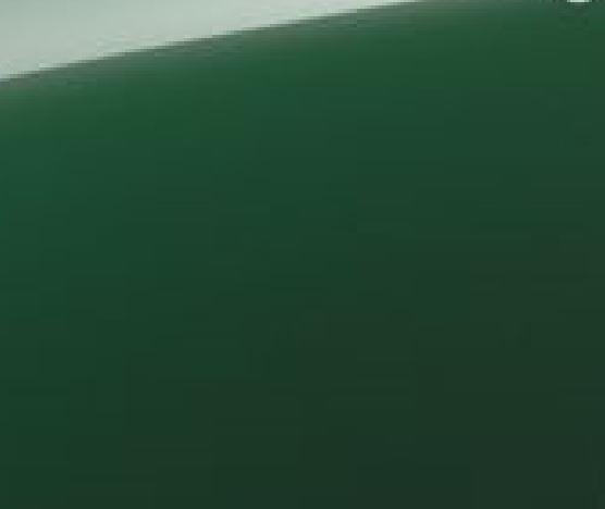 kleurbottlegreen