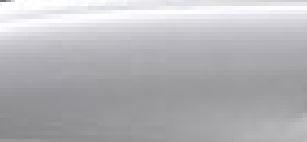 kleurmetallicfloretsilver